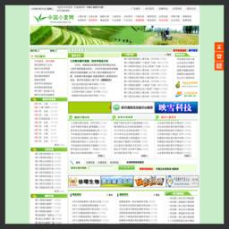 中国小麦网